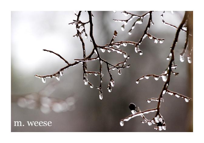 ice-05.jpg